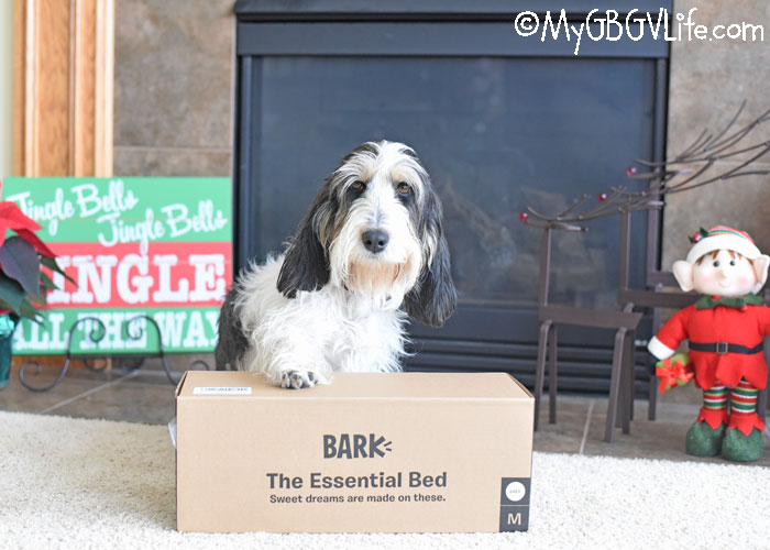 My GBGV Life Deal Of The Day On Bark The Essential Bed! Hurry Only 24 Hours!
