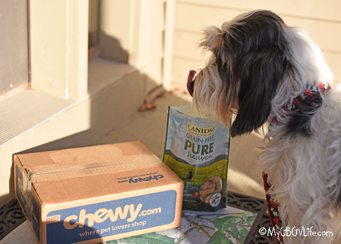 My GBGV Life Grab Canidae Snacks For Your Pup After A Walk #ChewyInfluencer