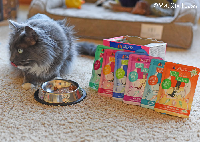 My GBGV Life Purrfect New Stew And Pate Recipes For Cats From Weruva!
