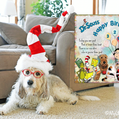 My GBGV Life Oh, The Places Dog Sports Will Take You - Dr. Seuss Day 2019
