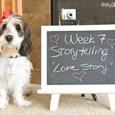 Storytelling – Love Story #DogwoodWeek7