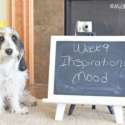 Inspiration – Mood You Are Feeling Today #DogwoodWeek9