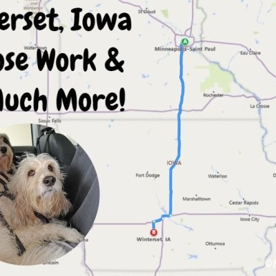 My GBGV Life Winterset, Iowa - Nose Work And So Much More