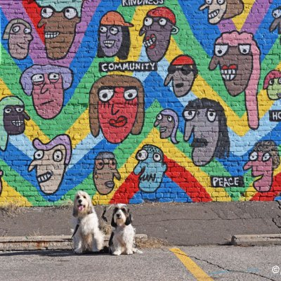Street Art In Minneapolis Continued – Super Cute