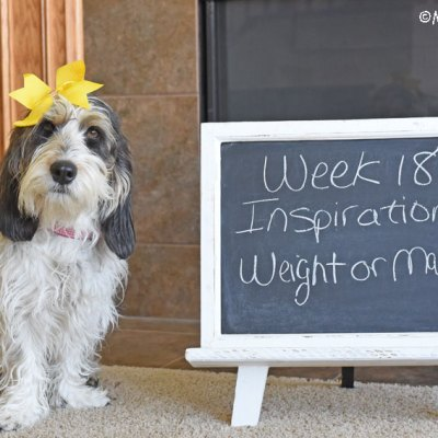 My GBGV Life Inspiration - Weight Or Mass #DogwoodWeek18