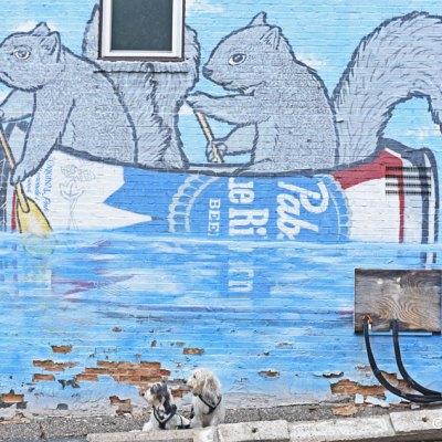 My GBGV Life SQUIRREL Street Art