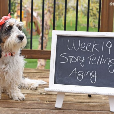 My GBGV Life Story Telling - Aging #DogwoodWeek19
