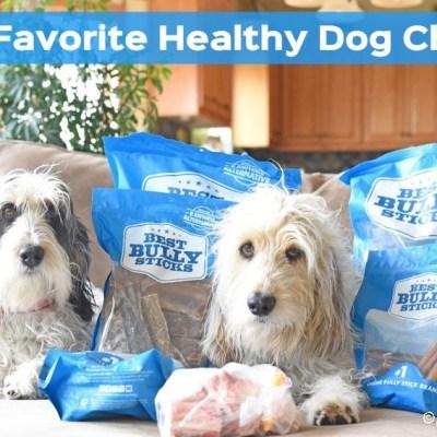 My GBGV Life Healthy Dog Chews Make Perfect Evening Snacks