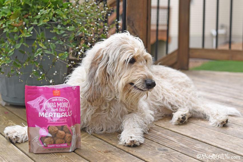 My GBGV Life Tasty, Soft Lamb Recipe Meatballs For Dogs