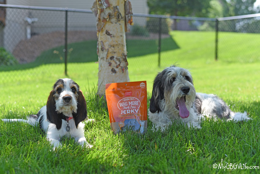 My GBGV Life Guilt Free Goodness For Dogs - Turkey & Cranberry Jerky