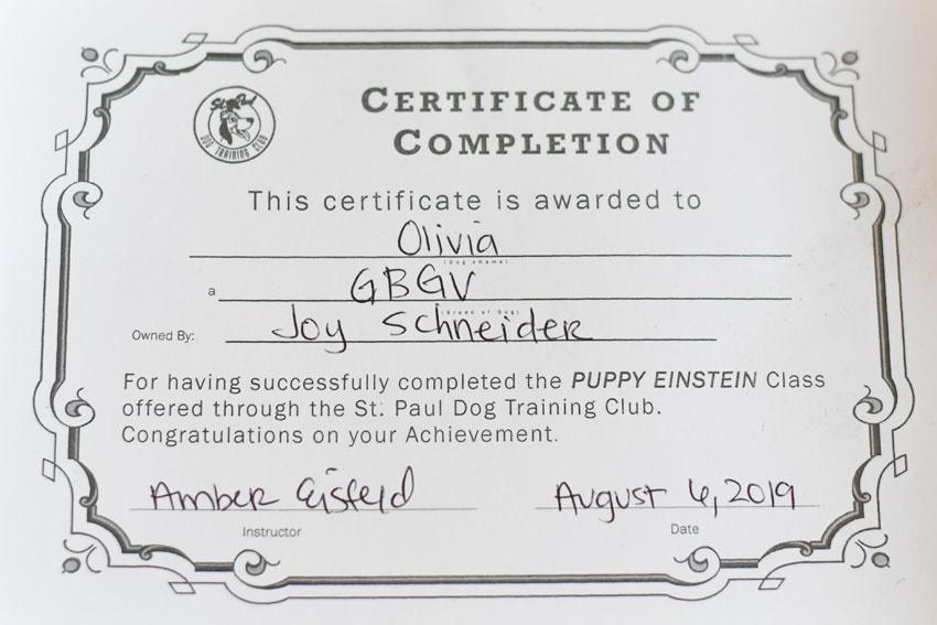 My GBGV Life Olivia's certificate
