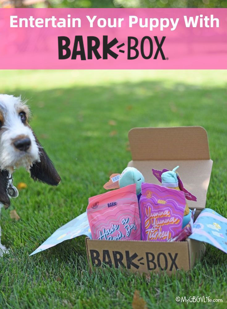 My GBGV Life Entertain Your Puppy With Bark Box