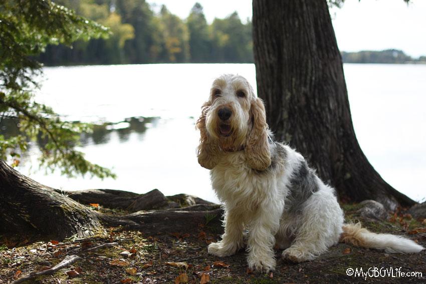 My GBGV Life Emma at the lake