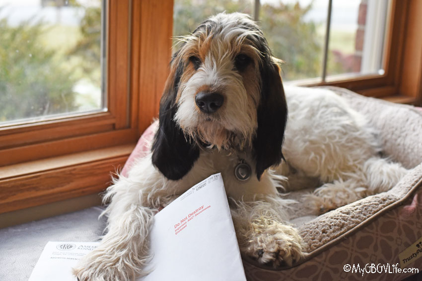 My GBGV Life Olivia Receives Her First Important Mail