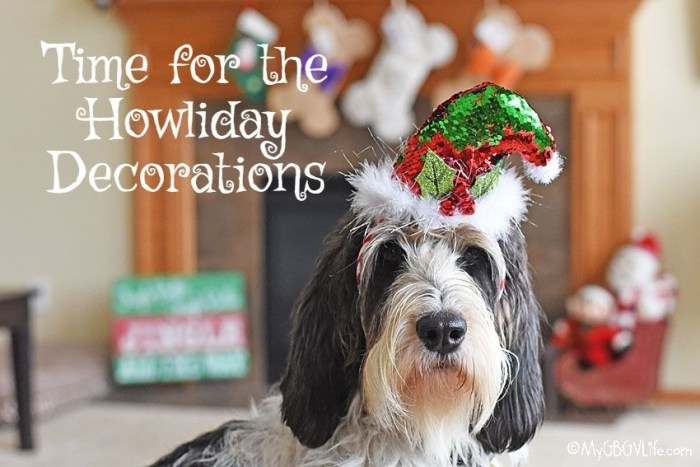 Time To Get Out The Howliday Decorations