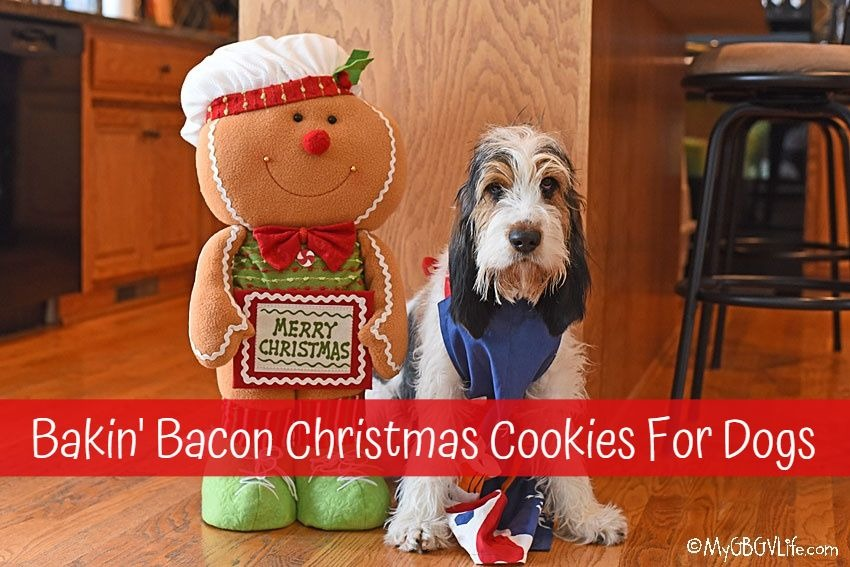My GBGV Life Olivia's Bakin' Bacon Christmas Cookies For Dogs