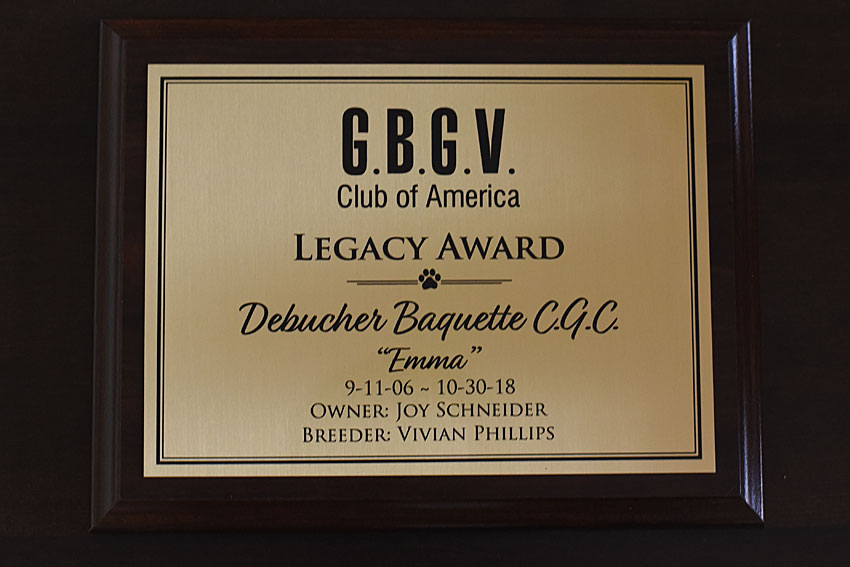My GBGV Life award