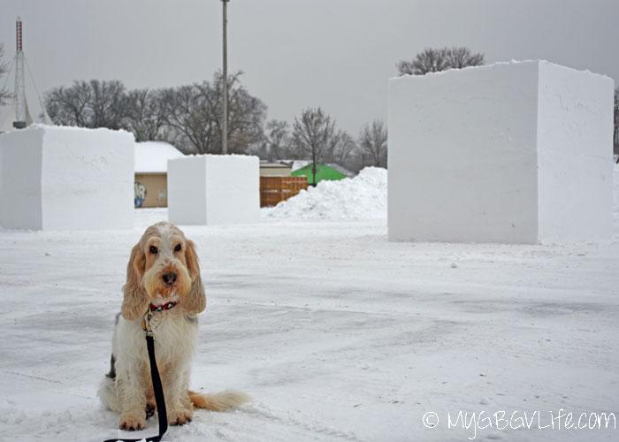 My GBGV Life blocks of snow