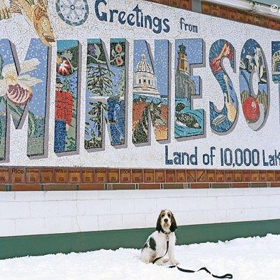 Greetings From Minnesota – Love, Olivia