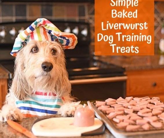 My GBGV Life Simple Baked Liverwurst Dog Training Treats