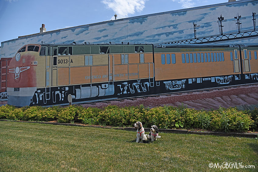 My GBGV Life Two Hounds Explore Boone, Iowa