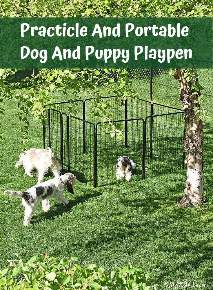 My GBGV Life Practical And Portable Dog And Puppy Playpen