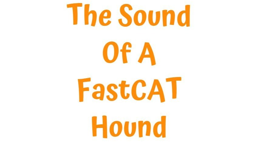 My GBGV Life Oh The Sound Of A FastCAT Hound
