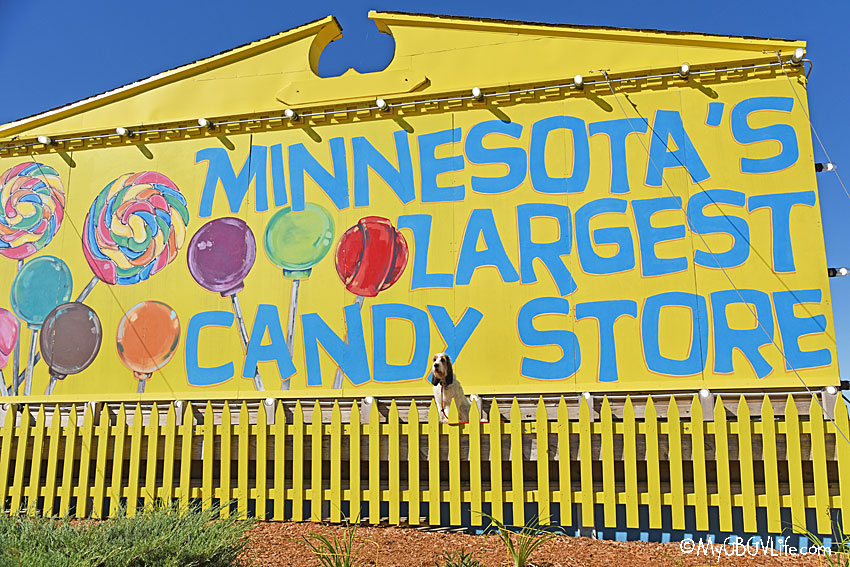 My GBGV Life Minnesotas Largest Candy Store - Can You See Me?