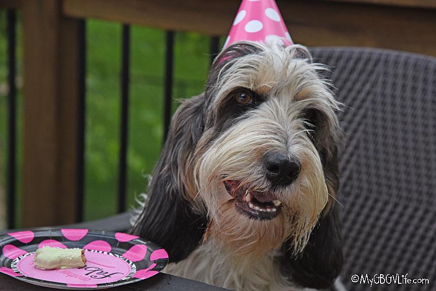My GBGV Life birthday girl smiling