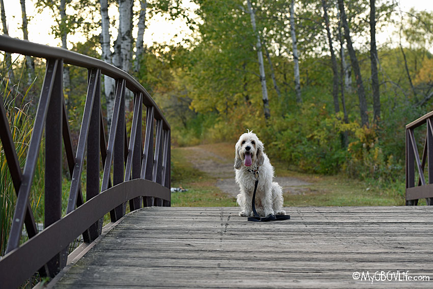 My GBGV Life sitting on the bridge