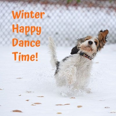My GBGV Life It's Winter Happy Dance Time At Our House