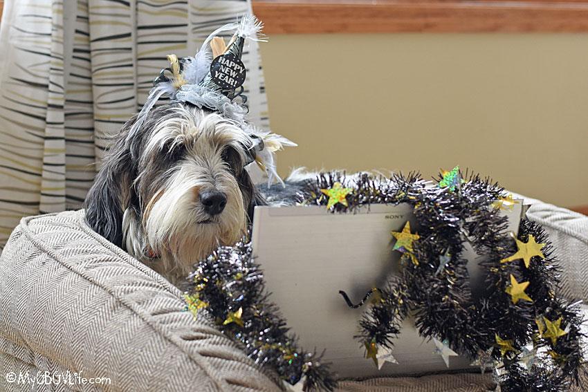 My GBGV Life Celebrating New Years Eve Day 2020