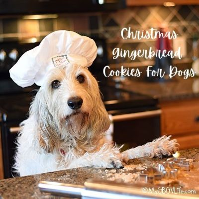 Let's Bake Christmas Gingerbread Cookies For Dogs