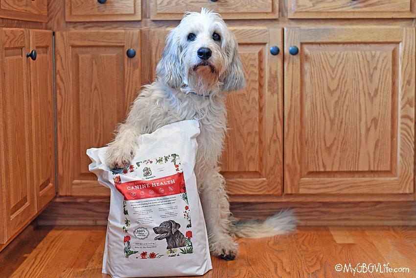 My GBGV Life Dr Harveys Canine Health