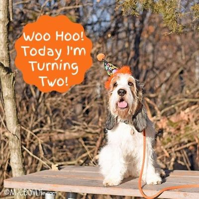 Woo Hoo! Today I'm Turning The Big Two!
