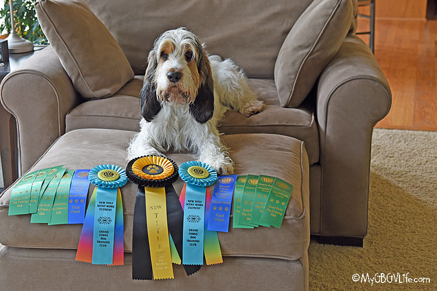 My GBGV Life Grand Forks Titles
