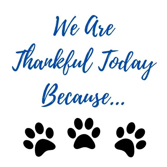 My GBGV Life We Are Thankful Today Because...