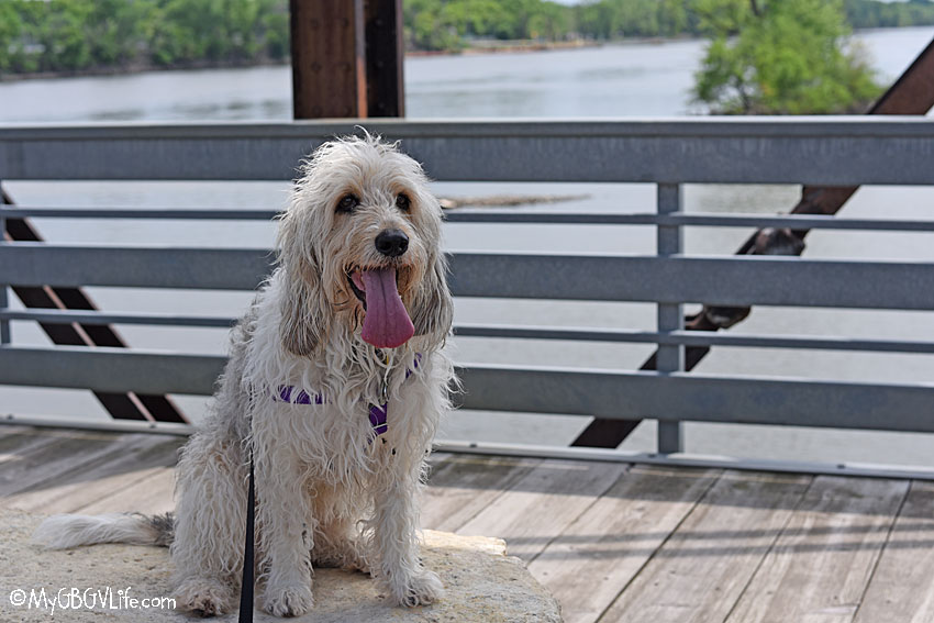 My GBGV Life A Visit To The Rock Island Swing Bridge