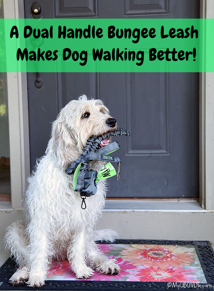 My GBGV Life A Dual Handle Bungee Leash Makes Dog Walking Better