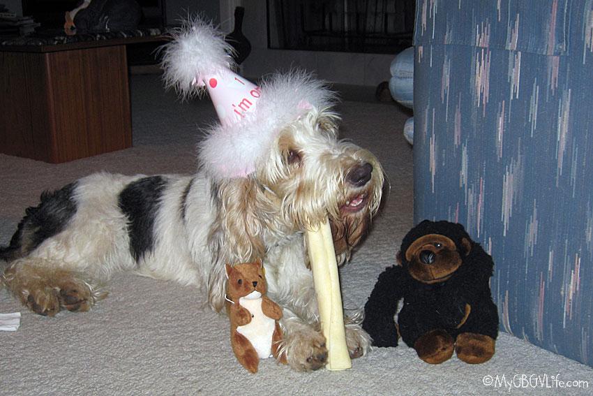 My GBGV Life Emma's first birthday