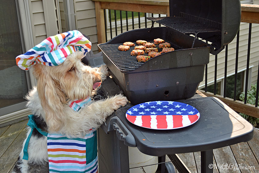 My GBGV Life 5 Ways To Celebrate Labor Day Weekend With Your Dog