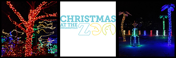 the most wonderful night at the indianapolis zoo for christmas at the zoo