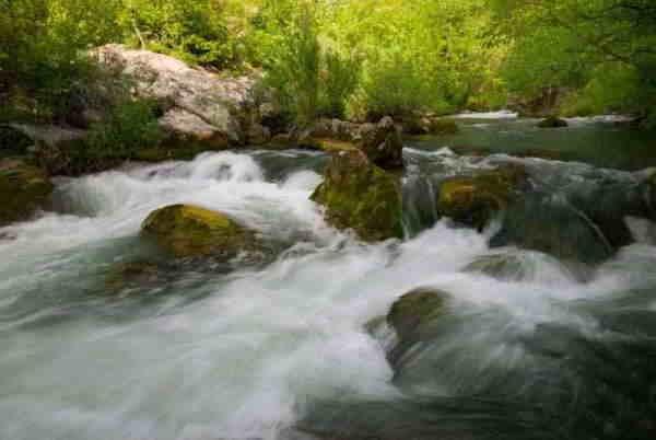 râul oaks pierdere în greutate calea mai rapidă la pierderea de grăsime recenzii reale