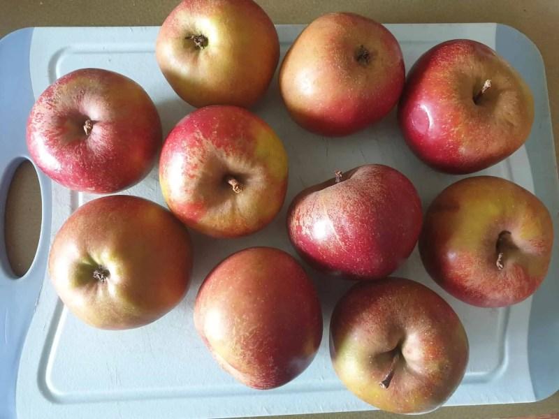 Boskop apples