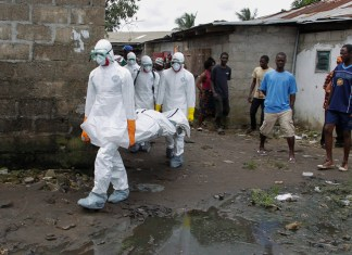 Why Ebola keeps coming back