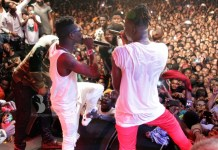 Don't insult Stonebwoy – Shatta Wale to fans