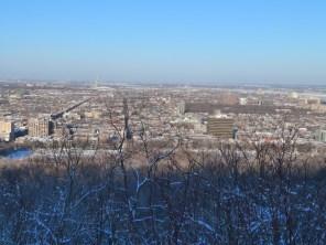 Mont Royal hiver 018