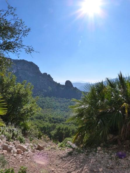 Paysages d'Andalousie 2