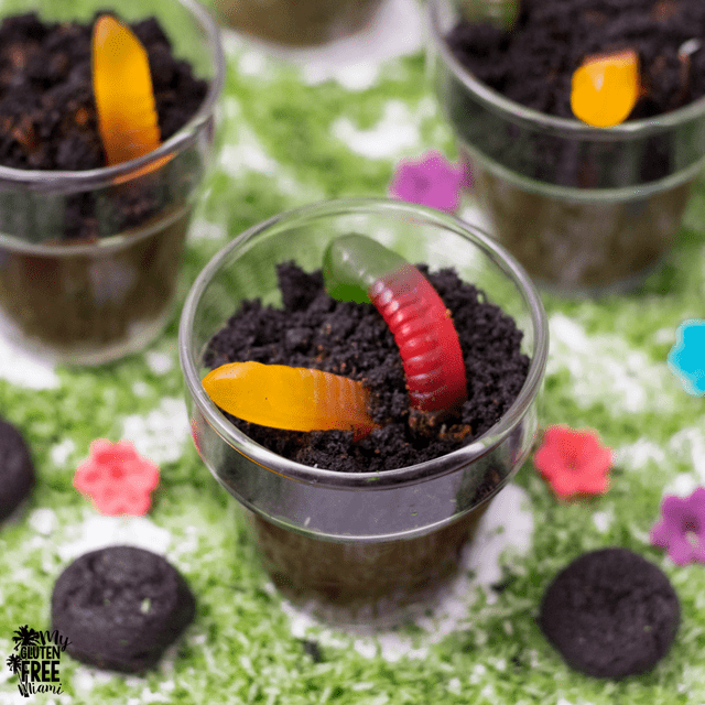 Gluten Free Dirt Cups for Earth Day (or Anytime!)