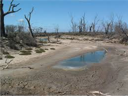A Gokwe Community Faces Drying Water Bodies in Suspected God's Anger